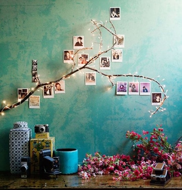 arboles para decorar paredes con fotos