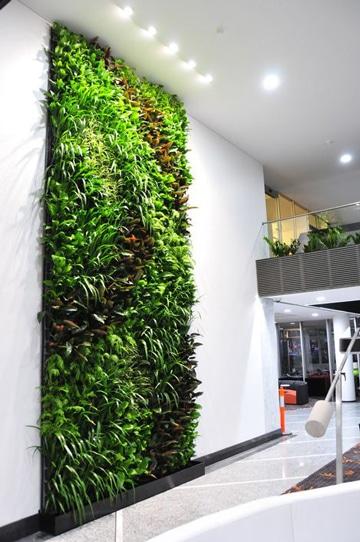 decoracion de interiores con plantas en mural