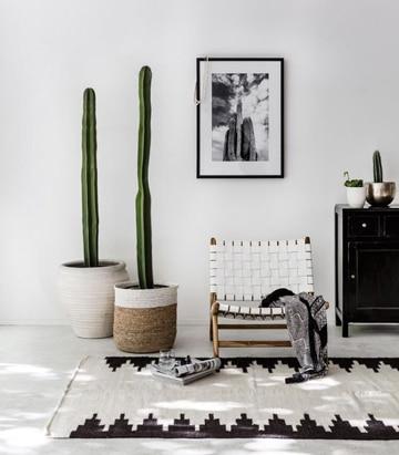 paredes blancas decoradas con mobiliario