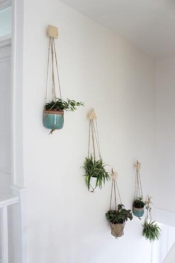 paredes blancas decoradas con plantas