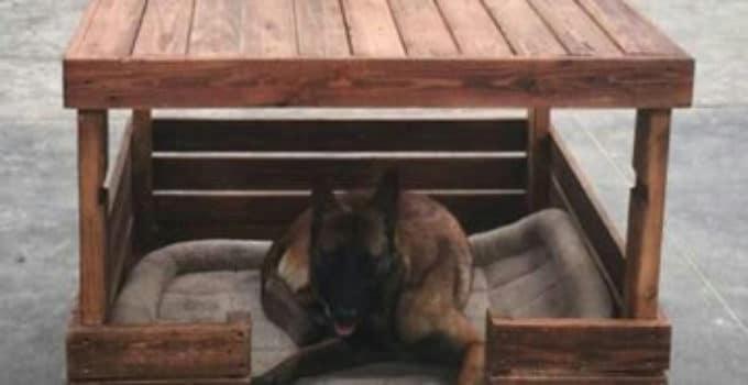 Como hacer una casa excellent como hacer una bonita casa - Como hacer una casa para perro grande ...