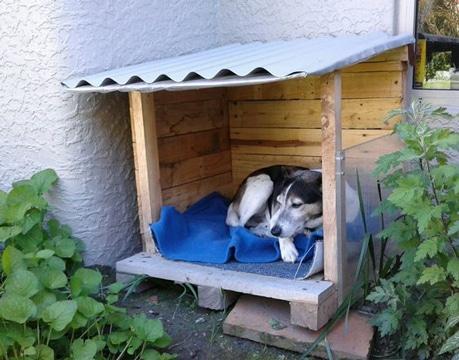casas de perros recicladas pequeñas