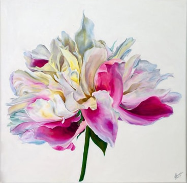 cuadros de flores en acrilico preciosos