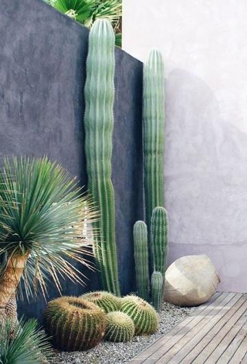 decoracion de terrazas con plantas diferentes tamaños