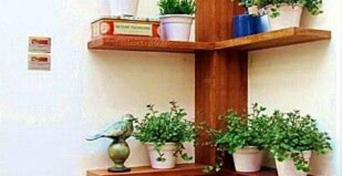 Plantas de interior para oficinas elegant plantas de - Plantas oficina ...