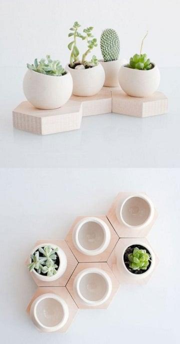 como hacer un terrario de cactus diseños