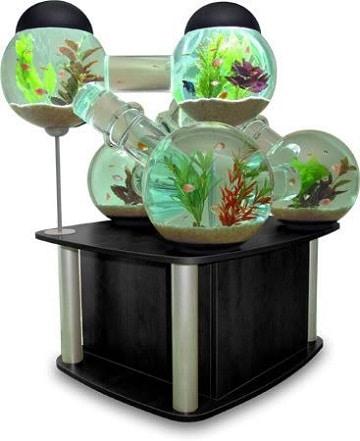 peceras redondas decoradas acuario