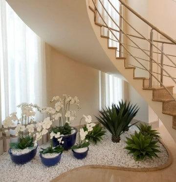 plantas para interiores oscuros bajo escaleras