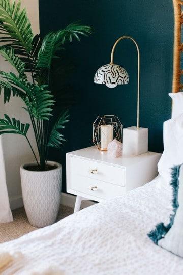 plantas para interiores oscuros en dormitorio