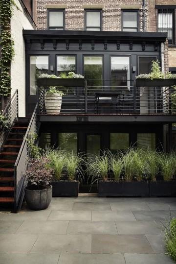 plantas para interiores oscuros idea