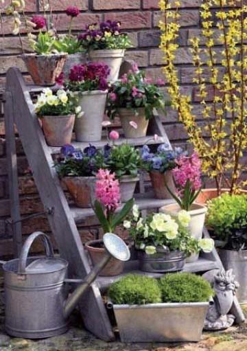 plantas para jardineras exteriores en maceteros