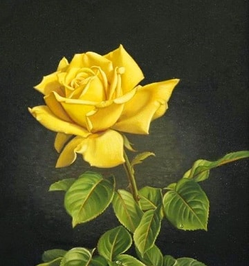 cuadros de rosas al oleo ideas