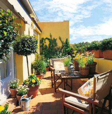 terrazas decoradas con plantas cuidadas