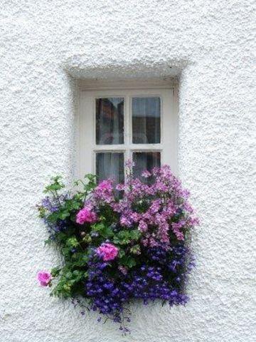 modelos de jardineras para casas de ventana
