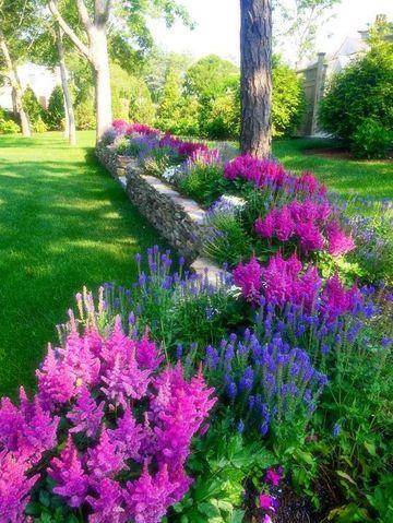 plantas para decorar jardines grandes
