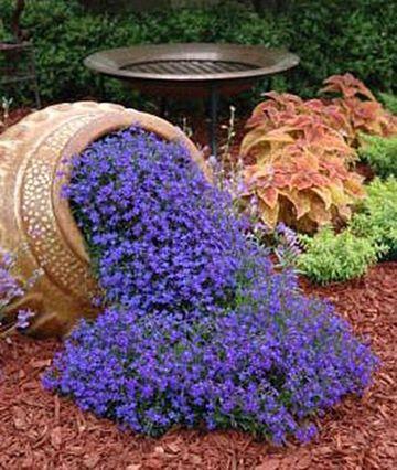 decoracion de jardines con plantas de flores