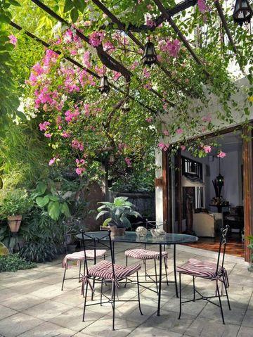 decoracion de patios exteriores con plantas