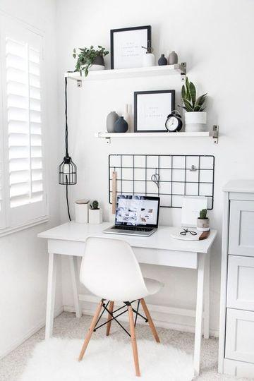 plantas pequeñas para oficina con luz natural