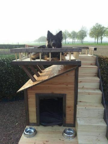 casas para mascotas de madera modernas