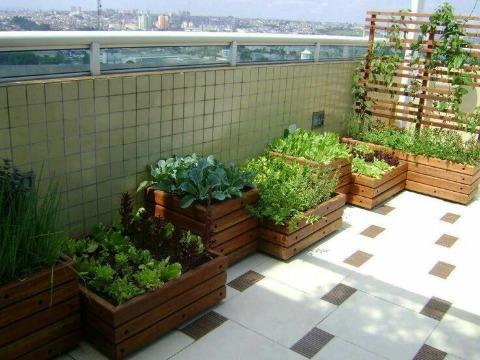 como hacer un huerto en la terraza urbano