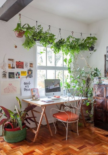 decorar salon con plantas naturales colgantes