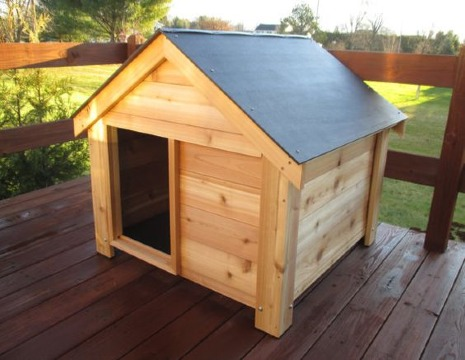 imagenes de casitas de perros faciles de hacer