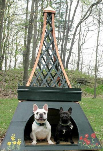 originales casas para mascotas de madera