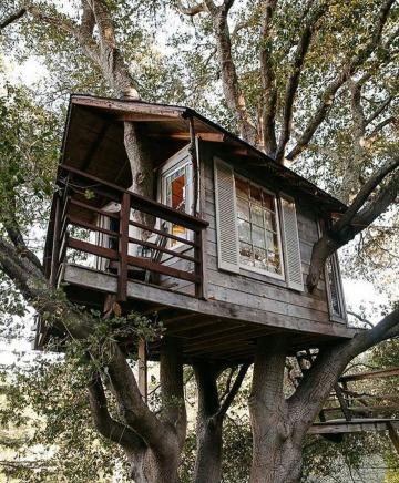 casas de madera en arboles sencillas
