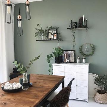 colores verdes para interiores de casa