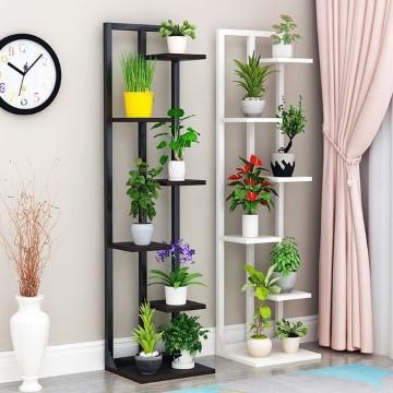 imagenes de plantas de ornato para interiores