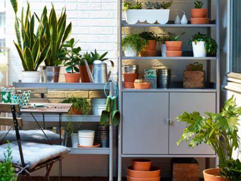 decoración de terrazas interiores plantas y taller