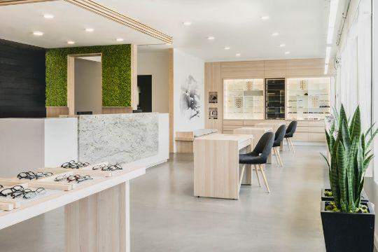 decoracion de interiores para negocios tonos y plantas