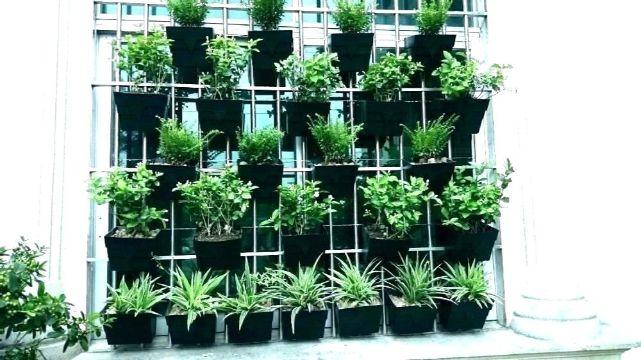 jarrones decorativos para jardin en ventanas