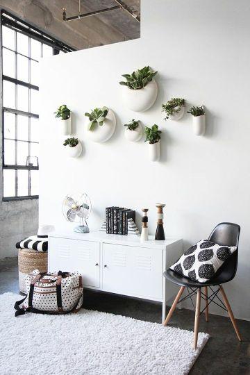 plantas para decoracion de interiores en muros