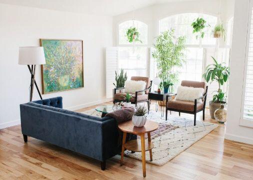 decorar la sala con plantas colgantes