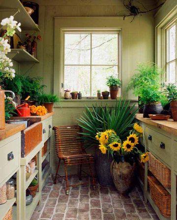 decoracion jardin interior pequeño plantas diversas