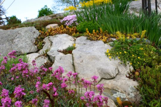 decoracion jardines con piedras grandes con plantas