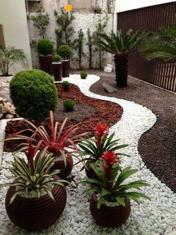 plantas para patios pequeños con piedras