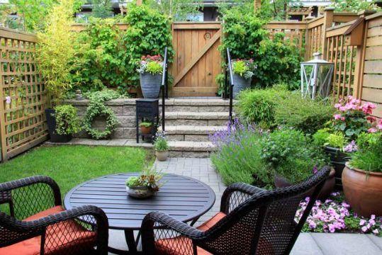 plantas para patios pequeños decoracion