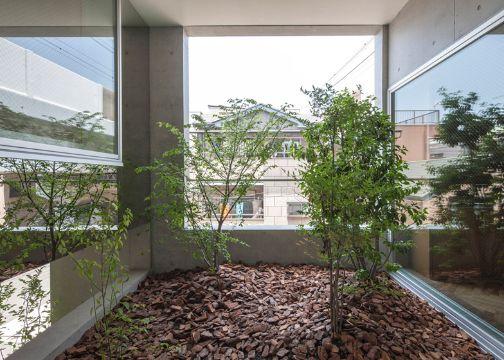 casas con jardin interior con piedras