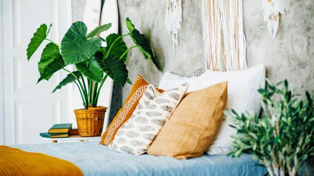 plantas para decorar recamaras sobre mesas de noche