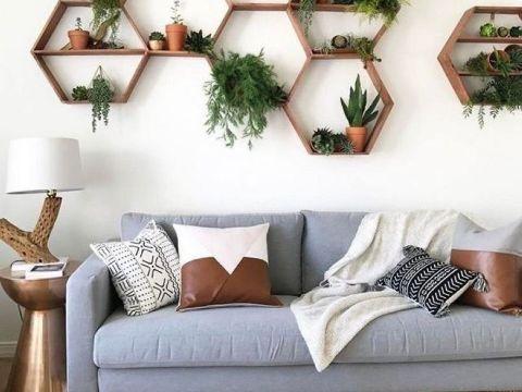 diseños para paredes de salas plantas