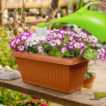 macetas largas de plastico con flores coloridas
