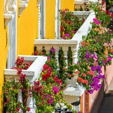 balcones de casas sencillas con muchas flores