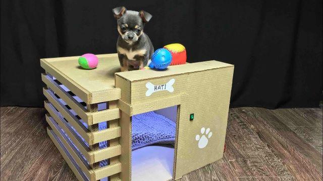 casas de carton para perros para cachorros