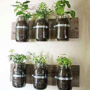 jardines pequeños en casa macetas en el muro