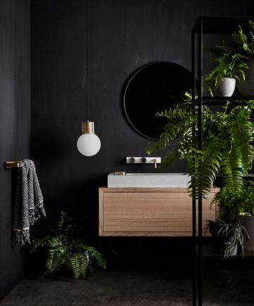 plantas para baños oscuros en muebles