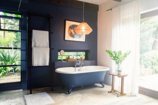 plantas para baños oscuros uso delicado