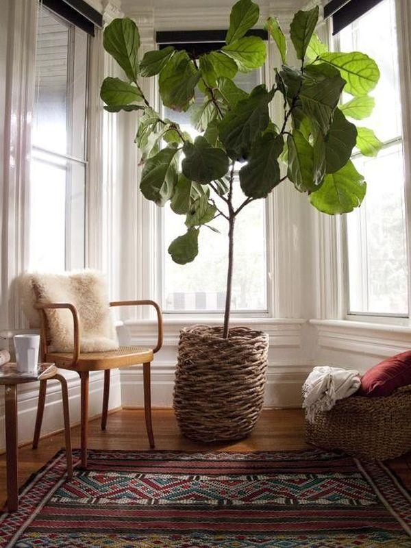 como decorar con plantas la casa macetas tejidas