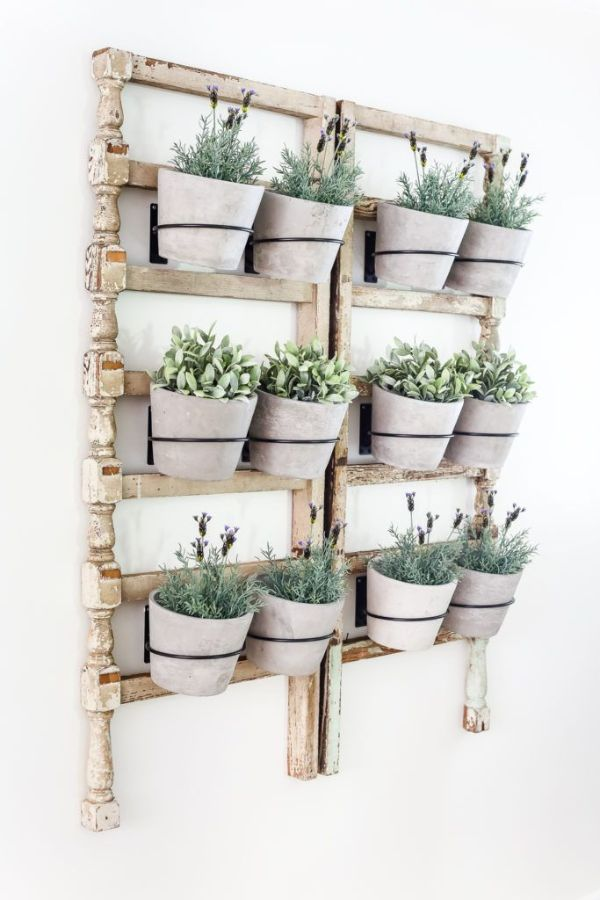 como poner plantas en la pared vintage reciclable
